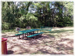 Green Picnic Table and Bench