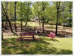 Red Picnic Table and Bench