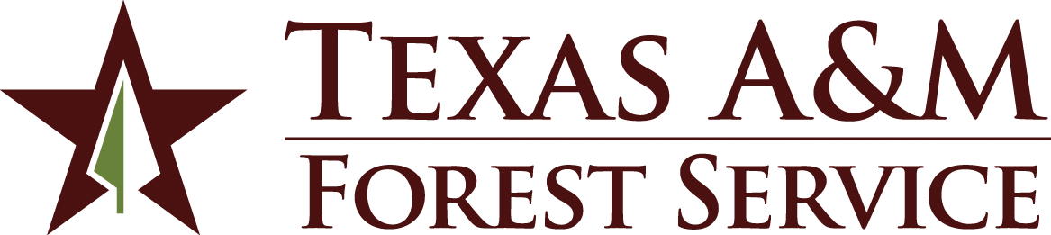 Texaas A&M Forest Service